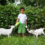 PJ and Goats, from Your Town Tomorrow. 2011. Pigment print.