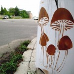 Brown Mushrooms. c. 2006. Spray paint.