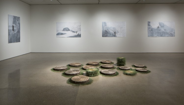 Installation view: Field Guide; Foreground: Ground 3; Background: Old Stand series. 2015. Photography by Tim Thayer.