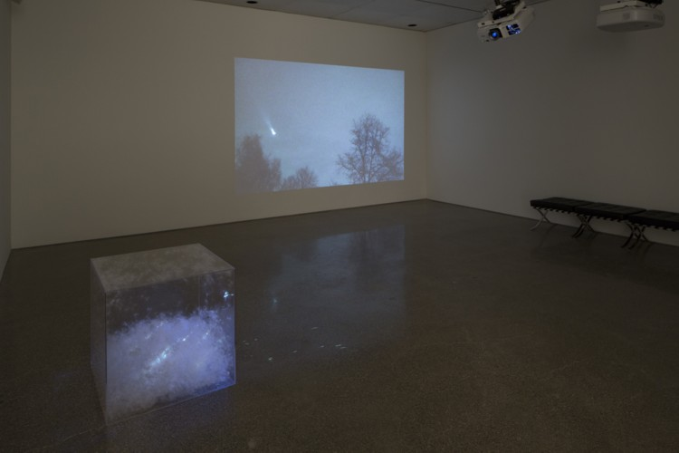 Installation: Big Sky Theory (wall) / Flights East with Milkweed (floor). 2011/2015. HD video / Milkweed, acrylic box, HD video. Photography by Tim Thayer.