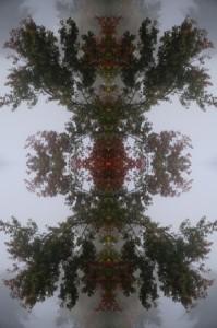 skysmall2