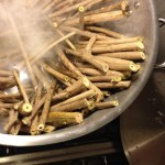 Invasive Paper Project - Cooking Amur Honeysuckle, 2014