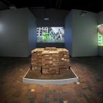 A Requiem for Douglass, 2015, installation view