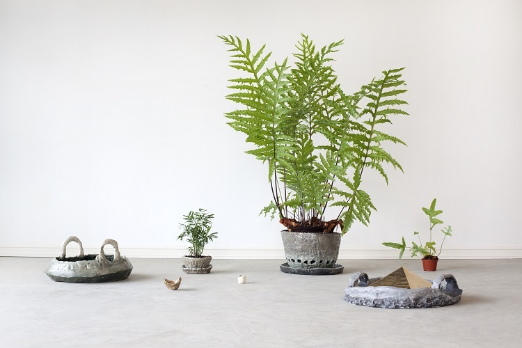Cultivating Civility, 2009, ceramic, plants, dimensions variable
