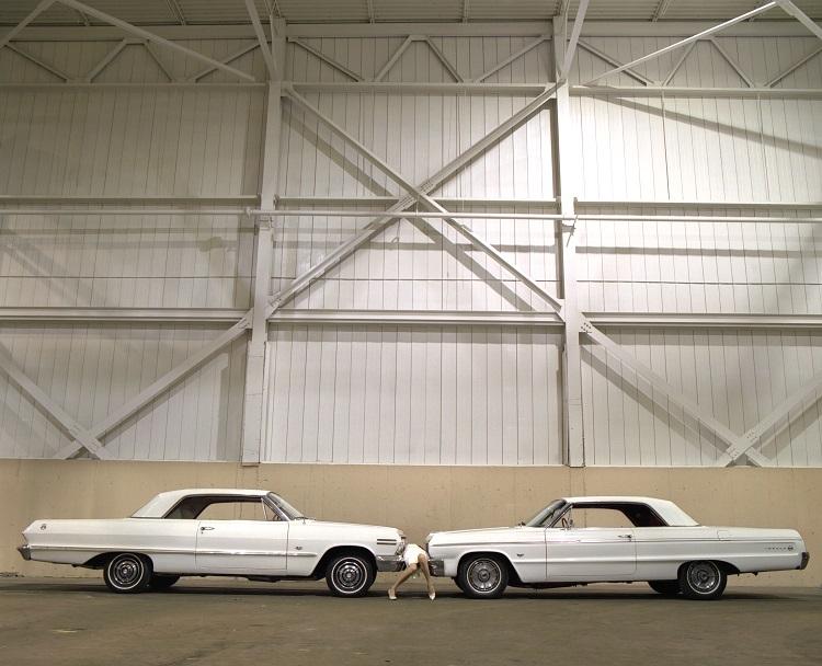 Impala, 2010, pigment print, 30 x 37 in